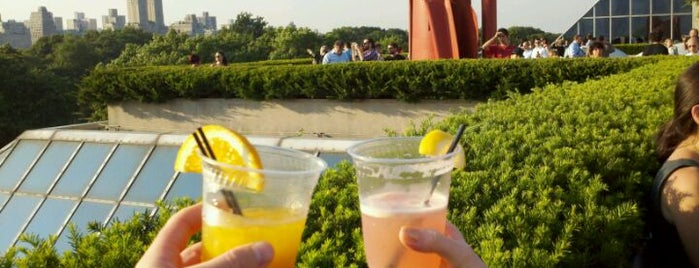 Iris & B Gerald Cantor Roof Garden is one of Best Rooftop and Outdoor Bars in New York City.
