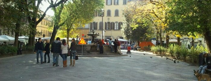 Piazza Santo Spirito is one of * ECOTOURISM GUIDE *.