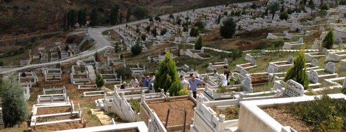 Yayla Mezarlığı is one of Posti salvati di Sibel.