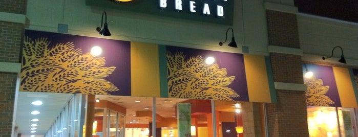 Panera Bread is one of Lieux qui ont plu à Tim.