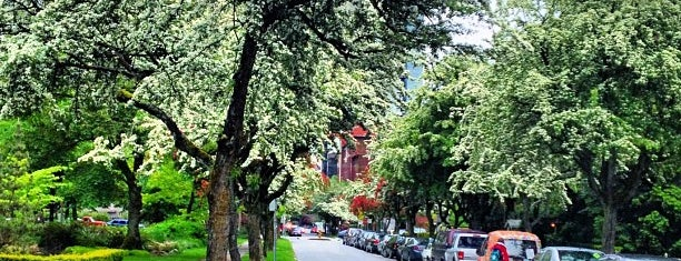 Nelson Park is one of Mint 님이 좋아한 장소.