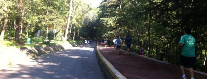 Pista del Bosque De Tlalpan is one of Posti che sono piaciuti a Luis.