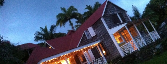 The Hermitage Hotel Nevis is one of Hotels I want to stay at.