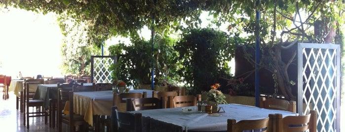 Zorba's Restaurant-Snack Bar is one of Родос.