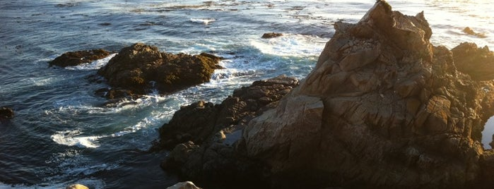 Highway 1 - Carmel / Big Sur is one of Nerdy and Artsy Places that Rock!.