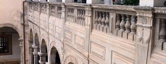Biblioteca Regionale is one of Palermo Sights.