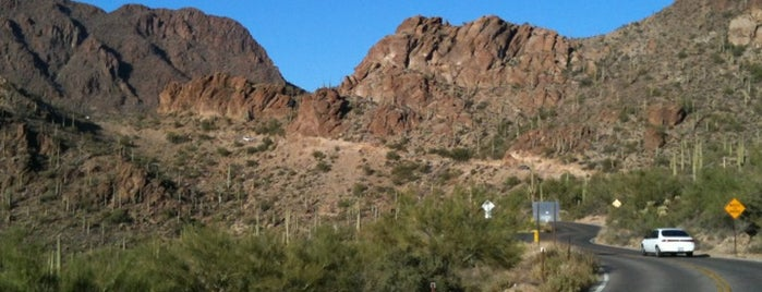 Tucson Mountain Park is one of Tucson.