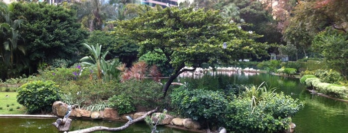 Kowloon Park is one of 101个宿位,在香港见到你死之前 - 101 places in Hong Kong.
