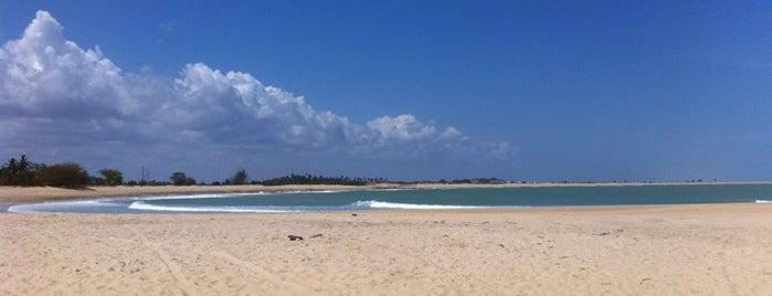 Praia de Tourinhos is one of Locais curtidos por Farid Meire.