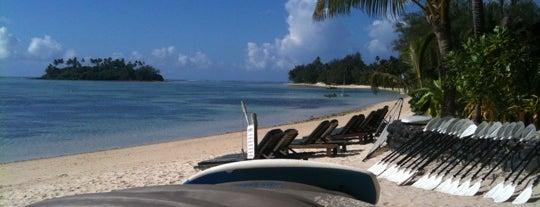 Barefoot Beachfront Bar is one of Ram's to-do list around the world.