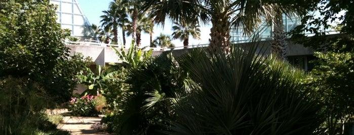 San Antonio Botanical Garden is one of Historic San Antonio.