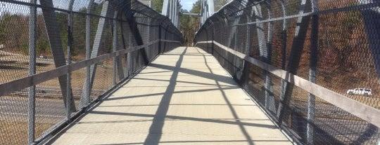 Reedy Creek Pedestrian Bridge is one of Must-Visit Hiking/Running Trails.