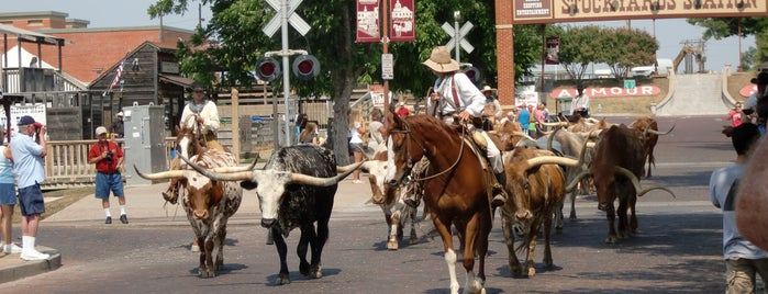 Fort Worth Stockyards National Historic District is one of * Gr8 Museums, Entertainment & Attractions—DFdub.