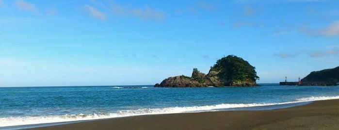 大浜海岸 is one of 日本の渚百選.