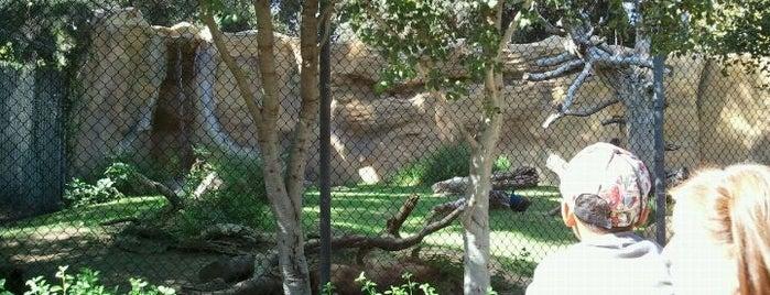 Orange County Zoo is one of Zoos/Aquariums in CA.