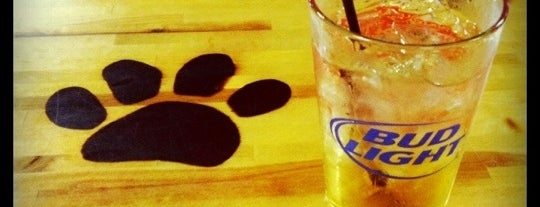 The Panther Paw is one of Official Blackhawks Bars.