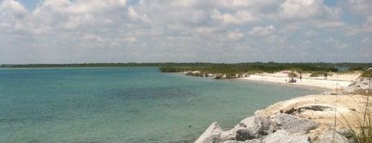 Ponce Inlet Beach is one of Orte, die Clark gefallen.