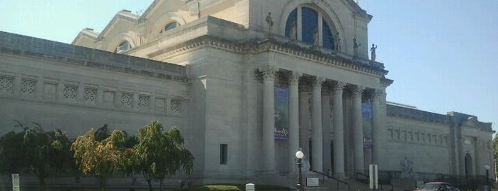 Saint Louis Art Museum is one of Stevenson's Favorite Art Museums.