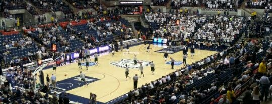 Gampel Pavilion is one of NCAA Division I Basketball Arenas/Venues.