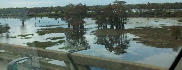 Henderson Swamp is one of U.S. Road Trip.