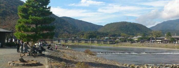 嵐山公園 中之島地区 is one of Sakura Trip 2017.