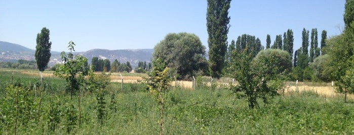 İnköy is one of Kütahya'nın Mahalleleri.