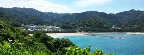 天草白鶴浜 is one of 日本の渚百選.