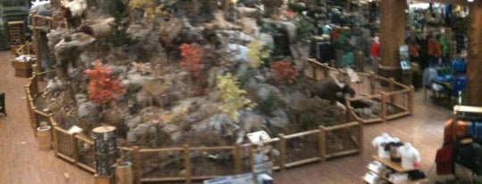 Cabela's is one of Chicago Northwest Attractions.