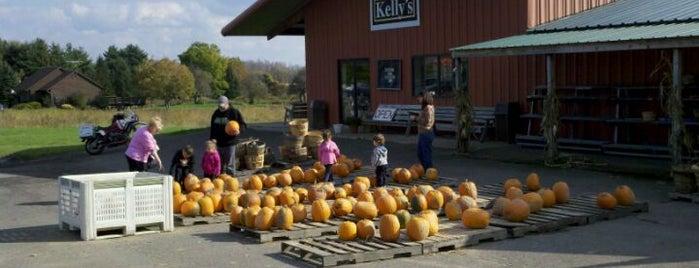 Kelly's Farm Market is one of Tempat yang Disukai Giuseppe.