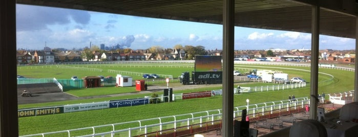 Redcar Racecourse is one of Lieux qui ont plu à Carl.