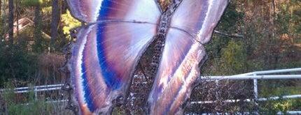 Magic Wings Butterfly House is one of Teresa 님이 저장한 장소.