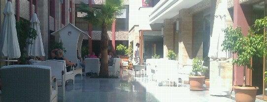 Paşa Bey Hotel is one of Locais curtidos por Kutay.