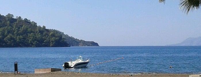 Günlüklü Koyu is one of Plaj ve Koylar.