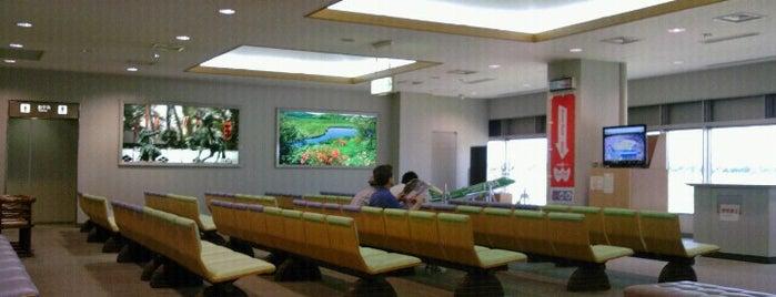 Shinshu Matsumoto Airport (MMJ) is one of International Airport Lists (2).
