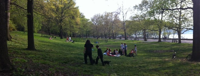 West 105th Street Dog Run - Riverside Park is one of All-time favorites in United States (Part 2).