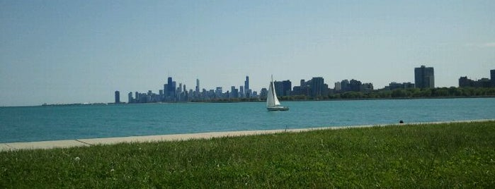 Montrose Beach is one of 101 places to see in Chicago before you die.