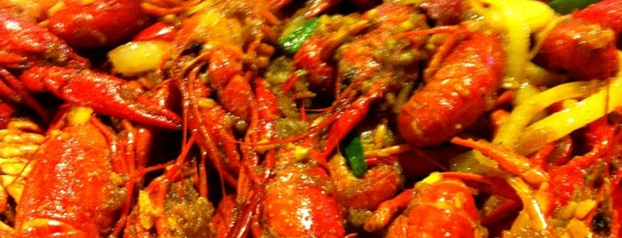 Wild Cajun is one of Houston Press 2011 - Crawfish Places.