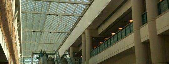 Atlantic City Convention Center is one of Locais curtidos por David.