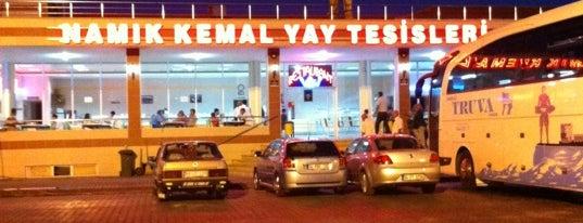 Namık Kemal Yay - Pet Dinlenme Tesisleri - 2 is one of สถานที่ที่ Süleyman ถูกใจ.