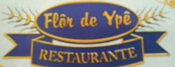 Flor do Ypê Restaurante is one of Bares, Petiscos e Diversão em SJC.