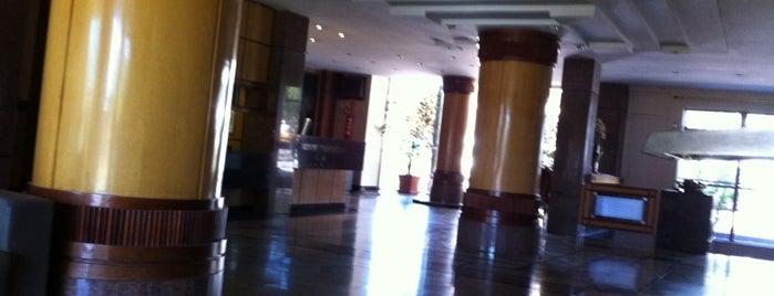 Monumental Bittar Hotel is one of Brasília Baby.