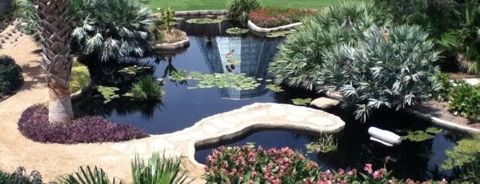 San Antonio Botanical Garden is one of San Antonio - Get Full. Have Fun. #visitUS #4sq.