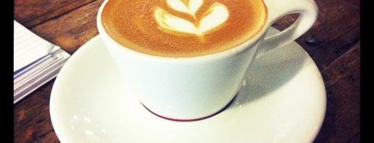 Chicago Coffee Snob