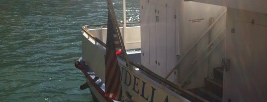 Wendella Boat Tours is one of #visitUS Chicago Tourist Must Check-into.