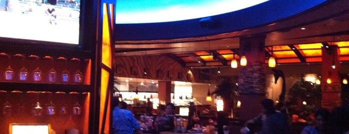 Elephant Bar is one of Lugares favoritos de Jill.