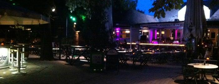 Hofgarten Café is one of Austria Clubkultur.