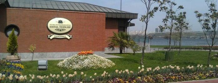 İBB Küçükçekmece Sosyal Tesisleri is one of Locais curtidos por Özden.