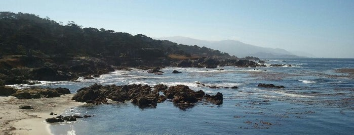 Pebble Beach is one of Going Back To Cali...Again.