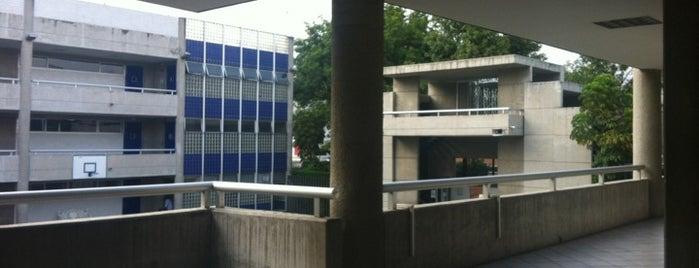 Universidad Del Tepeyac is one of Universidades Ciudad de México.