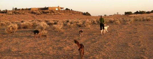 Frank S. Ortiz Dog Park is one of Santa Fe.